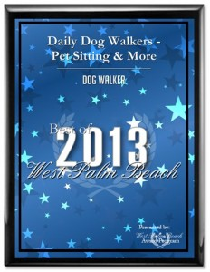 best dog walker west palm beach